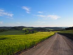 Kirchgandern im Eichsfeld (Meine Sicht auf diese Welt...) Tags: kirchgandern eichsfeld stationsweg olympus zuiko 1442 stimmung farben farbig frühjahr korn gerste himmel blau wolken