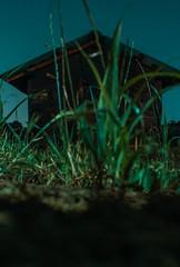 Countryside Barn (d1l093) Tags: colour night nightcrawler barn green greenish grading long exposure cityscape longexpo high iso sonya5100 low sony a5100 5100 kiron 28mm 56 vintagashooting vintage lens