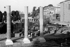 Foro della pace (dede0561) Tags: roma foriimperiali bn bw film analogico argentique tempiodellapace colonna architetturaromamor monumentiromamor