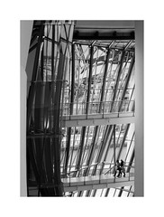 A masterpiece of the 20th c. 14 (2 Marvelous 4 Words (Blanca Gomez)) Tags: bilbao spain museum guggenheimmuseum museo arquitectura architecture building masterpiece artgallery arts workofart frankgehry thomaskrens bw blackwhite deconstructivism glass limestone titanium