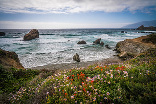 Big Sur Spring Wildflowers California Superbloom Scenery! Elliot McGucken Fine Art Landscape & Nature Photography! High Res Scenic Wild Flowers View! Sony A7R II & Carl Zeiss Sony Vario-Tessar T* FE 16-35mm f4 ZA OSS Lens! Cloudy Spring Super Bloom Vista!
