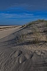 IMG_7198.jpg (patrick Thiaudiere, thanks for 1,5 million views) Tags: sable sand dune plage mer sea bleu matin morning herbe traces empreinte