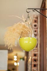 IMG_8632 (fabianamsolano) Tags: green cup cafe vegan raw coffee espresso wrap vegetables dessert happy boba tea