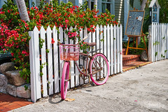 Key West Transportation (Andrea Garza ~) Tags: florida keywest bike bicycle floridakeys keys travel usa tropical island paradise transportation vacation bougainvillea whitepicketfence pink
