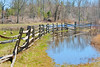 Fences, Flooding (Chancy Rendezvous) Tags: flood puddle reflection water geese canadiangeese wood wooden field farm pond quinebaugriver quinebaug river oldsturbridge sturbridge massachusetts spring landscape hff