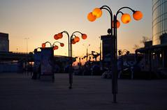 Apr 25, 2018 (pavelkhurlapov) Tags: bluehour pattern square building lampposts light sunrise gradients overpass glass reflections cobblestone cityscape sky