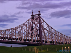 The Giant (Brian D' Rozario) Tags: brian19869 briandrozario manhattan nyc newyorkcity newyork nikon d750 70300mm scale bridge queensboro metal frame giant gigantic lonely loneliness grassy grass meadow