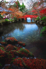 Wooden bridge in the pond, Autumn park (Patrick Foto ;)) Tags: architecture asia autumn background beautiful beauty bridge building color colorful culture environment fall foliage forest garden green japan japanese kyoto landscape leaf light maple morning nature new november october orange outdoors park path plant pond red season stream swamp temple tourism tranquil travel tree water waterfall yellow zen kyōtoshi kyōtofu jp