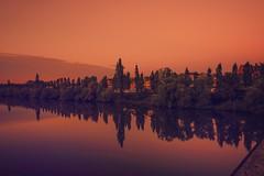 Sonnenaufgang... (hobbit68) Tags: sonne himmel wasser water river fluss main baum sunset red rot spiegelung sky clouds wolken frankfurt fechenheim mirror