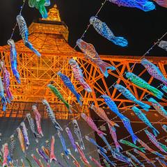 Children's Day (703) Tags: carp childrensday japan koinobori pentaxk3ii tokyo tokyotower cityscape night nightscape nightscene nightview こいのぼり こどもの日 夜景 子供の日 日本 東京 東京タワー 鯉のぼり 港区