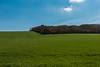 The end of the winter (Joseph Trojani) Tags: yonne sens bourgogne burgundy champ prés nature paysage landscape shy ciel nuage cloud campaign campagne vert green nikon d750 winter hiver chaleur hot