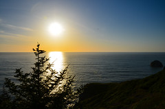 High Bluff Overlook, Redwood National Park - California (TravelMichi) Tags: californa california travel usa2018