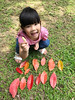 20180512_高峰植物園 (violin6918) Tags: violin6918 taiwan hsinchu apple iphoto7plus i7 mobile cute lovely littlebaby angel children child pretty princess baby portrait kid daughter girl family shiuan plants 高峰植物園
