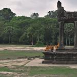 Monks at Angkor Wat thumbnail