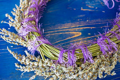 Wreath of lavender on a blue wooden board (yannamelissa) Tags: wreath lavender white wood flowers background purple aromatic nature decoration flower plant floral pink herbal herbs scent lilac closeup holiday blue rustic barn texture natural wooden spring nobody interior aged country farm violet handmade aromatherapy dried fragrance calming beautiful green fairy crafted old art board