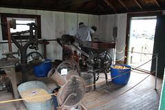 Newfane 066 (43) (swi66) Tags: dunkirk hit miss motors diesel cannons farm tractor john deere antique historical