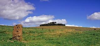 towards minninglow