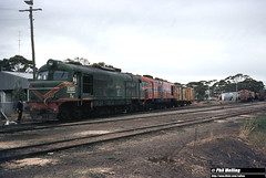3467 XB1020 XA1411 XB1004 XA1405 A1503 Lake Grace 17 February 1983 (RailWA) Tags: railwa philmelling westrail 1983 xb1020 xa1411 xb1004 xa1405 a1503 lake grace