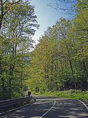 18050718752valtrebbia (coundown) Tags: gita tour statale stradastatale 45 ss45 valtrebbia trebbia natura boschi verde fiume