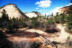 Bleached White Navajo Sandston (dorameulman) Tags: dorameulman utah zionnationalpark zion mountains navajosandstone landscape landscapephotography haiku canon7dmark11 canon