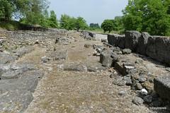 Main Street Rooms (Shops) .JPG (tobeytravels) Tags: alexanderthegreat alexander3rd macedon macedonia thucydides brasidas orpheus hellenistic cranicos leake