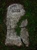 Leah, widow of Simeon Brown (Nesster) Tags: mt hebron cemetery montclair nj