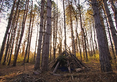 Hippie Hut (Tiara Rae Photography) Tags: hippie hut shack house teepee tipi shelter sticks wood forest woods trees nature fort nebraska omaha landscapes landscape outdoors golden hour glow brush green april