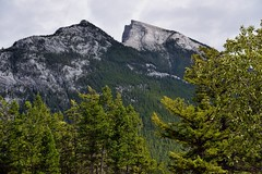 A Look to the Rundle Peaks Just Beyond the Trees at Surprise Corner (thor_mark ) Tags: nikond800e lookingse day2 triptoalbertaandbritishcolumbia banffnationalpark capturenx2edited colorefexpro surprisepoint surprisecorner mountrundle rockymountains canadianrockies southerncontinentalranges southbanffranges rundlepeaks outside nature landscape overcast mountains mountainsindistance mountainsoffindistance mountainside trees hillsideoftrees evergreens project365 alberta canada