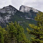 A Look to the Rundle Peaks Just Beyond the Trees at Surprise Corner thumbnail