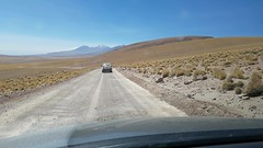 Vicuñas (Luís Biggi) Tags: reservanacionallosflamencos vicuñas sectorlagunasmiscantiymiñiques chile desert deserto vulcão volcano vulcán atacama andes