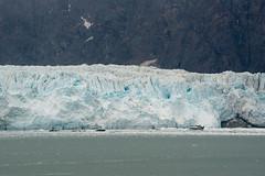 MS Westerdam - 7 Day Alaska May 2018 - Glacier Bay-117.jpg (Cindy Andrie) Tags: alaska hollandamerica d800 nature britishcolumbia beach victoriabc westerdam glacierbay landscape nikon cindyandrie canada andrie glaciers nikond800 cindy