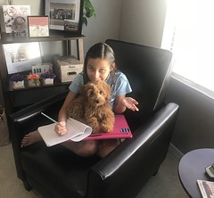 Maggie's sweet girl Maggie loves helping her sister with homework!