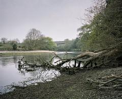 Marsh Mills #7 (@davidflem) Tags: plymouth plym devon mamiya7 65mm kodak portra400 120film 6x7 mediumformat filmphotography istillshootfilm