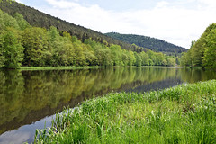 L'étang du Fleckenstein (Croc'odile67) Tags: nikon d3300 sigma contemporary 18200dcoshsmc paysage landscape étang reflexion reflet vosgesdunord forest forets