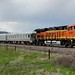BNSF Officer Special (Castle Rock Joint Line) Tags: