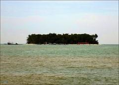 Pariaman Palau Angso Duo 20180107_112708 DSCN1202 (CanadaGood) Tags: asia seasia asean indonesia indonesian sumatra westsumatra sumaterabarat pariaman beach island sea indianocean tree shore canadagood 2018 thisdecade color colour