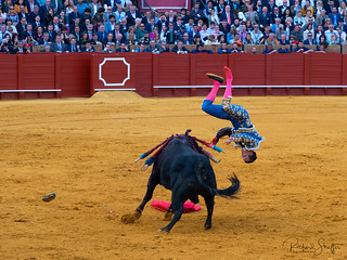Bull 1 Matador 0