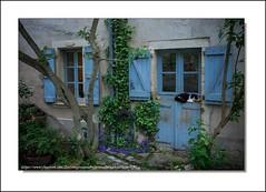 La Maison Paisible (Jérôme Delahaye) Tags: olympus em1 zuiko 1240 lamaisonpaisible bruniquel