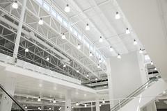 NHM Atrium Roof
