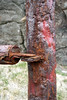 DSC00299 - Colours of Rust.... (archer10 (Dennis) 136M Views) Tags: sony a6300 ilce6300 18200mm 1650mm mirrorless free freepicture archer10 dennis jarvis dennisgjarvis dennisjarvis iamcanadian novascotia canada rust post