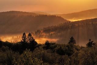Ambiance magique dans les Vosges...