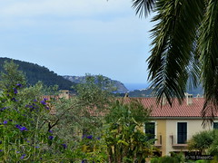 Mallorca '15 - Andratx 16.Jpg (Stappi70) Tags: urlaub spanien park palausonmas mallorca garten gärten flora andratx