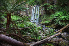 Hopetoun Falls || VICTORIA || AUSTRALIA (rhyspope) Tags: australia aussie vic victoria great ocean road lorne hopetoun falls rhys pope rhyspope canon 5d mkii water waterfall forest woods rainforest green fern tree plant moss rocks nature color colour cool travel tourist
