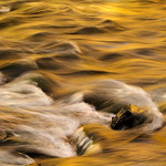 Waves in Gold thumbnail