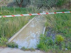 DSC06594 (Fotografías Gaby) Tags: rioebro ebro zaragoza crecida extraordinaria riada rio españa aragón