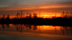 On Golden Pond (04 26 2018) (PhotoDocGVSU) Tags: sunset colors pond reflections westmichigan silhouettes canon5d3