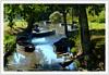 Parc de la Brière -  Brière park (diaph76) Tags: extérieur france paysage landscape arbres trees rivière river herbe grass eau water feuillage foliage barques boats