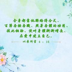 圣经金句-彼此相助 (追逐晨星) Tags: 金句 圣经金句 金句卡片 彼此相爱