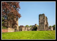 Ashby De La Zouch Castle (veggiesosage) Tags: ashbydelazouch castle aficionados gx20 grade1listed leicestershire