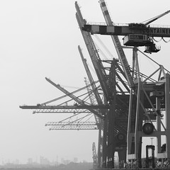 Put your hands up in the air! (tom.leuzi) Tags: bw canonef70200mmf4lisusm canoneos6d deutschland germany hamburg blackandwhite schwarzweiss container port containerbrücke crane